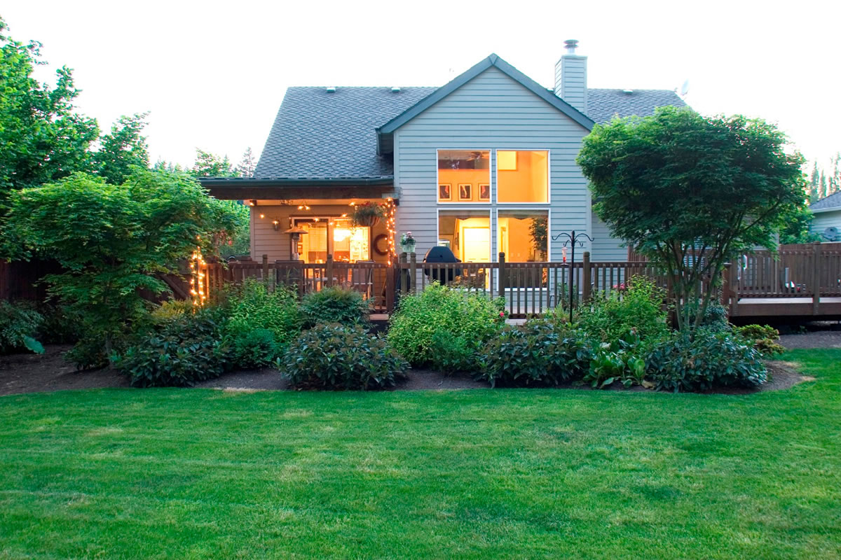 Four Reasons to Get Rid of Overgrown Shrubs and Trees in Your Yard